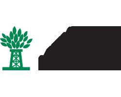 Newpark Logo TalentGuard