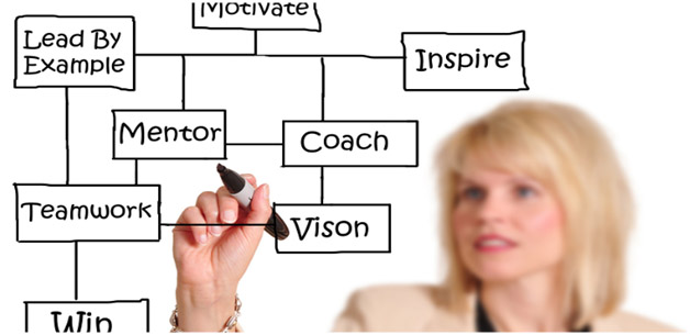 Career Coach drawing examples